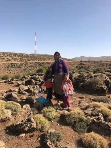 berber 1